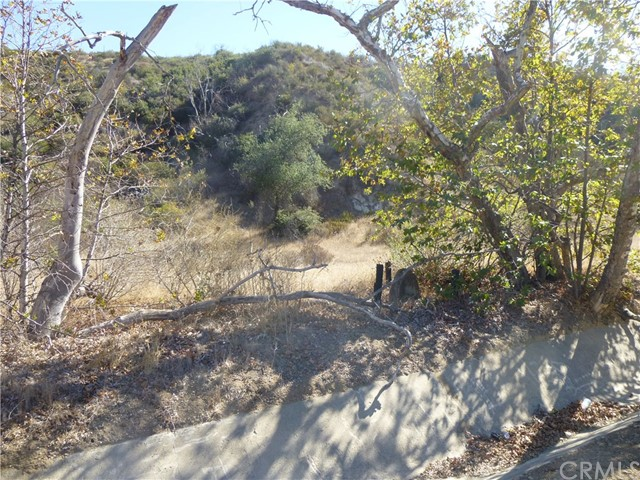 0 Jackson Ranch Road, Silverado Canyon CA: http://media.crmls.org/medias/1a4a2799-ff98-4371-96cb-db6b394b02d2.jpg