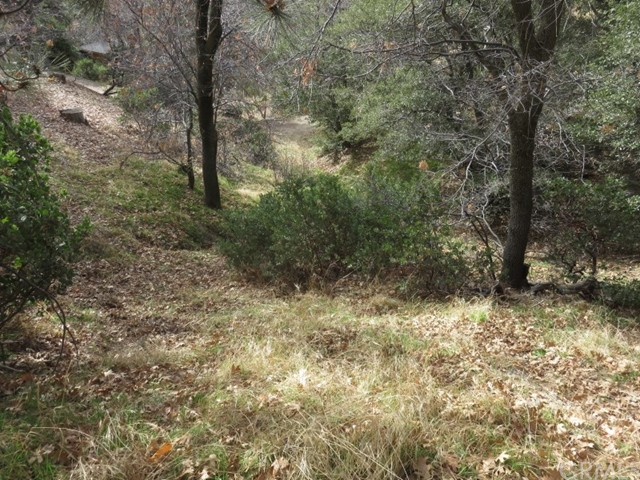 Detail Gallery Image 1 of 12 For 0 Hillside Spur, Cedar Glen,  CA 92321 - – Beds   – Baths