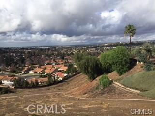 1 Trail Dr. Drive, Anaheim Hills CA: http://media.crmls.org/medias/1ac7efa4-f18f-4132-93e6-6f07584f08ee.jpg