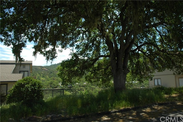 5040 Meadow Lark Lane, Paso Robles CA: http://media.crmls.org/medias/1add6131-1ade-48ef-b694-f2be55aa9c09.jpg