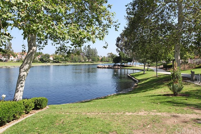 23 Celosia 27 Rancho Santa Margarita Ca 92688