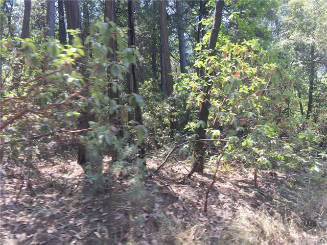 0 Hidden Springs Berry Creek, CA 0 - MLS #: OR18199914