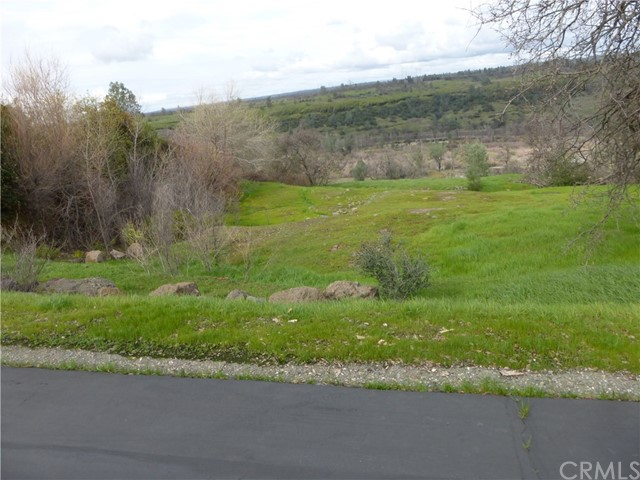 31 Eagle Nest Drive Chico, CA 95928 - MLS #: CH17031405