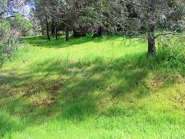 18605 Pine Flat Court, Hidden Valley Lake CA: http://media.crmls.org/medias/1d8e4e56-9241-464d-a429-c842a7bb6330.jpg