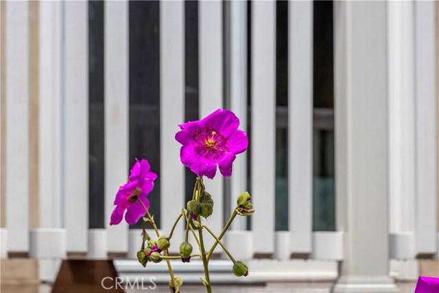 3000 N Poinsettia Ave, Manhattan Beach, CA 90266 photo 34