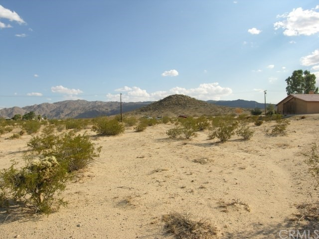 0 Two Mile Road, 29 Palms CA: http://media.crmls.org/medias/1d9bae1e-c605-4df0-8d7d-dd5a4c029b6a.jpg