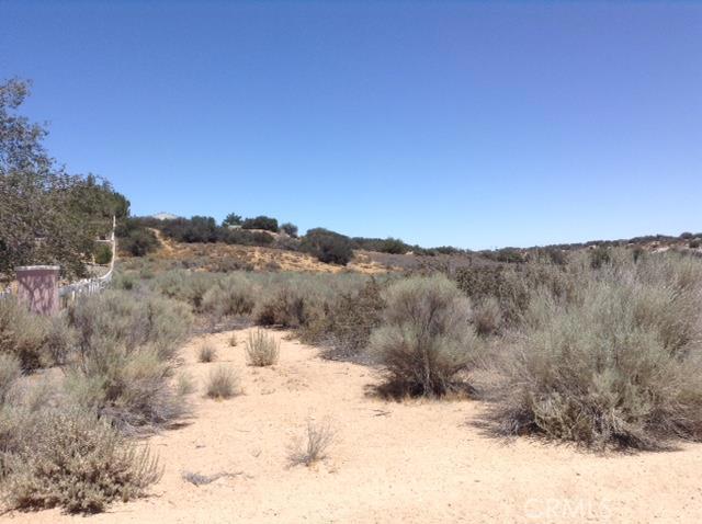 0 Forestry Road, Oak Hills CA: http://media.crmls.org/medias/1e519df1-9a4e-4f5d-991d-95ff0025eae0.jpg
