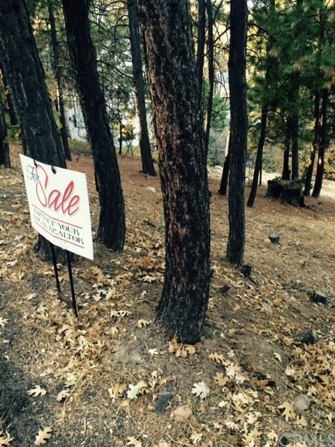 Additional photo for property listing at 0 Matterhorn  Lake Arrowhead, California 92352 United States