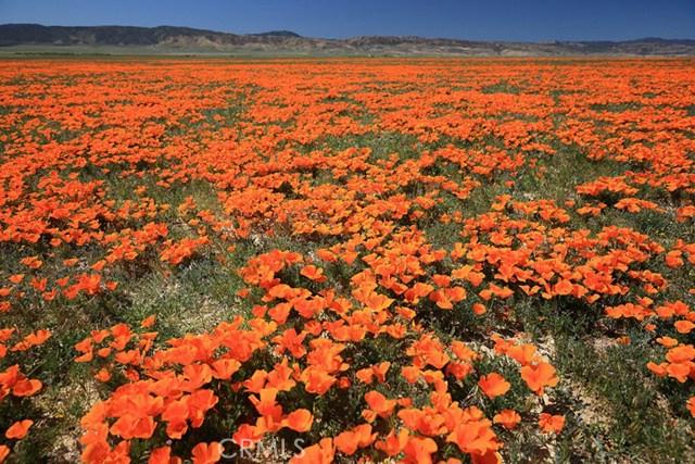 0 Vac/Cor Avenue G2/136 Stw, Antelope Acres CA: http://media.crmls.org/medias/1f64037a-4869-4d8f-9dc0-075b237a7d8e.jpg