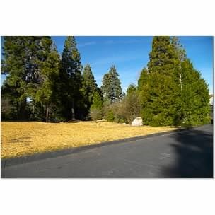 , CA  is listed for sale as MLS Listing IV17272369