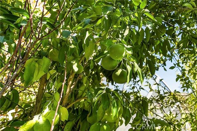 18245 Boxwood Court, Hidden Valley Lake CA: http://media.crmls.org/medias/1f74ba44-18e3-48f0-9c31-5948d0591604.jpg