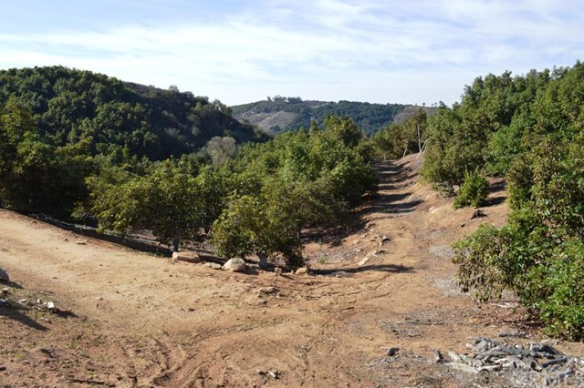 Additional photo for property listing at 12575 Calle De Halcones  Valley Center, California 92082 United States