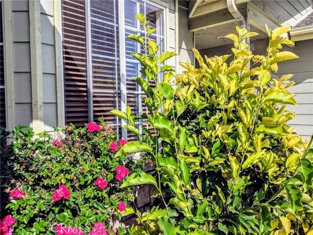 240 Daffodil Avenue, Nipomo CA: http://media.crmls.org/medias/21080820-54f3-4acb-8e8e-b3bbc63366fd.jpg