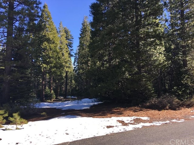 Single Family for Sale at 18 Biggers Glen Sub Butte Meadows, California 95942 United States