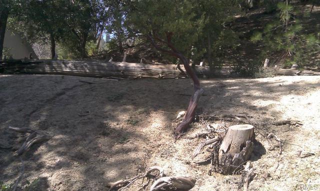 0 Robin Oak Drive, Angelus Oaks CA: http://media.crmls.org/medias/229798bd-9472-4a8a-9427-28f3d3d1d04d.jpg