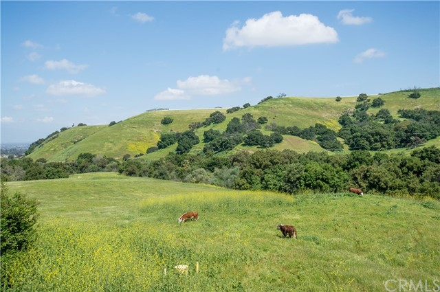 15471 Feldspar Drive, Chino Hills CA: http://media.crmls.org/medias/2332ddc9-1c69-4e0c-9085-0455aba43431.jpg