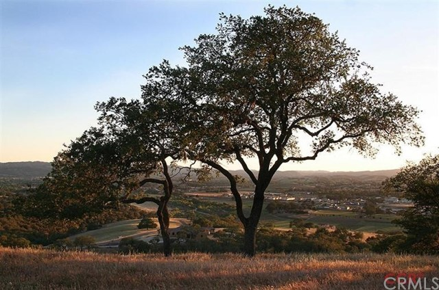 1320 Burnt Rock Way Templeton, CA 93465 - MLS #: NS1074831