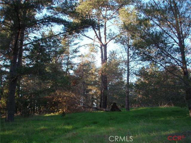 6785 Cambria Pines Road, Cambria CA: http://media.crmls.org/medias/23a767a7-9268-4199-a4fc-3e25cae5889d.jpg