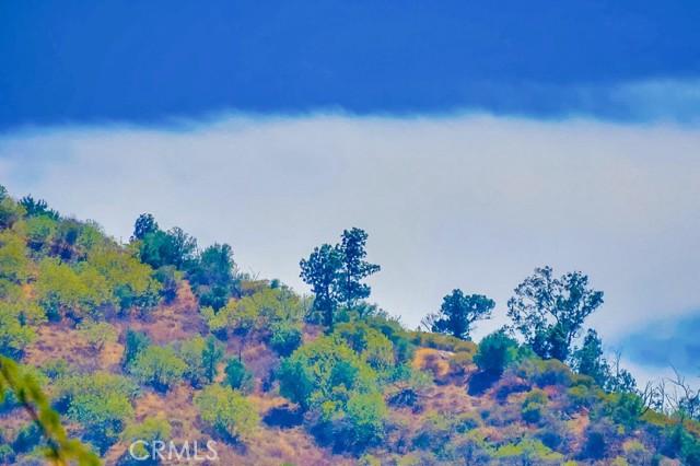 3954 N Sequoia Street, Atwater Village CA: http://media.crmls.org/medias/23b83e67-c8e8-4d4d-bec5-a1356bad5d68.jpg