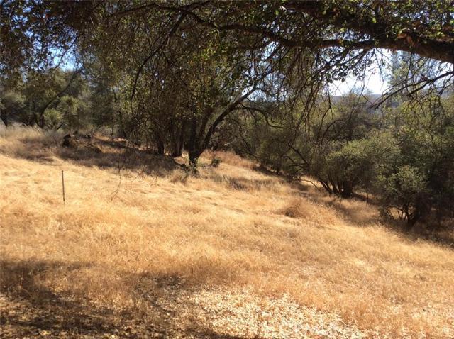 0 Moonray Lane, Oakhurst CA: http://media.crmls.org/medias/23d1edf6-e2c1-45b5-bc21-8277b0cf002f.jpg