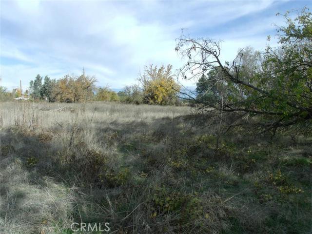 0 Highway 99, Orland CA: http://media.crmls.org/medias/23f6ebe2-fb38-4e5f-b605-08ced8a4d8c2.jpg