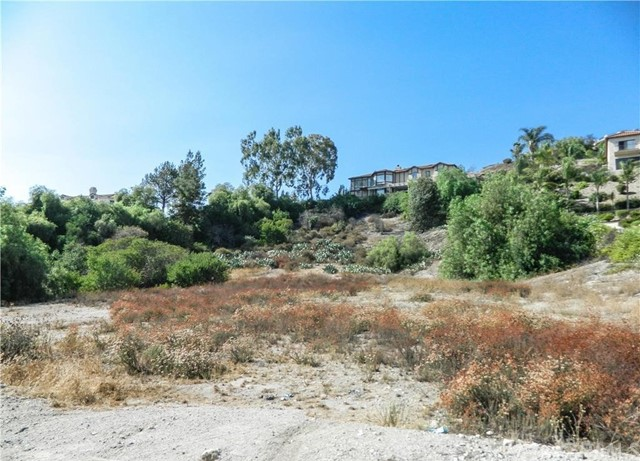 363 Puddingstone Drive San Dimas, CA 0 - MLS #: CV17157820