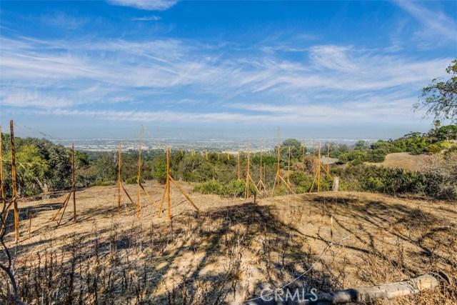 5 PINE TREE LANE, ROLLING HILLS, CA 90274  Photo 7