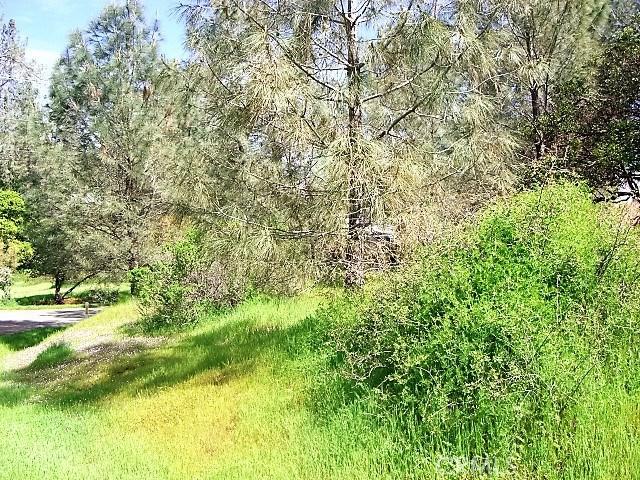18605 Pine Flat Court, Hidden Valley Lake CA: http://media.crmls.org/medias/259ca8f3-8310-4a57-8d6c-fd0b55c35668.jpg