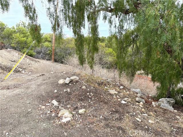30 Peppertree Drive, Rancho Palos Verdes CA: http://media.crmls.org/medias/25d0ae50-b2d7-4a9e-8ae6-e667006d5aa4.jpg