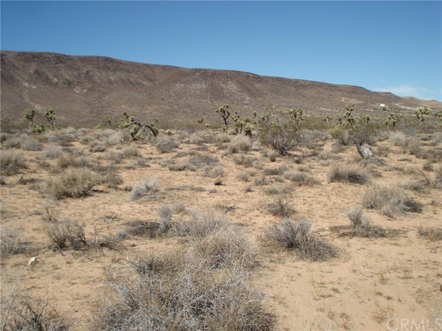 0 Old Woman Springs Road Yucca Valley, CA 92284 is listed for sale as MLS Listing WS15220757