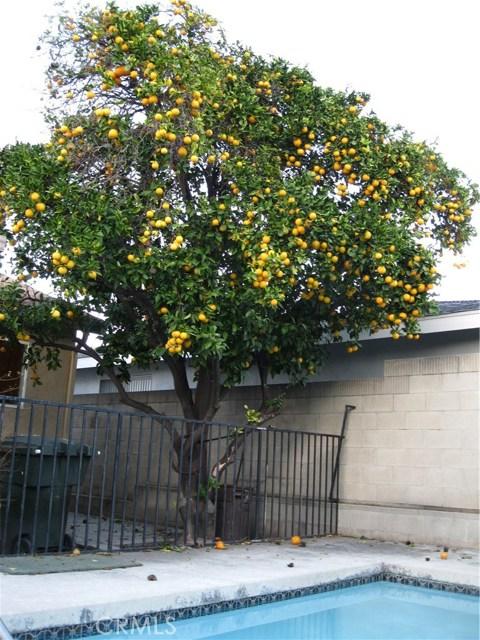 3100 W Glen Holly Dr, Anaheim, CA 92804 Photo 9