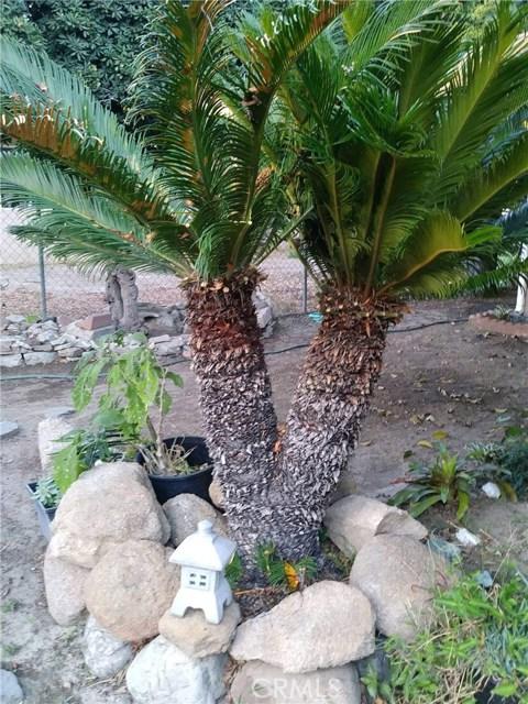 809 S Knott Av, Anaheim, CA 92804 Photo 14