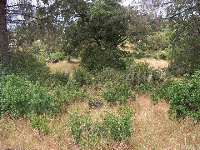 0 Wild Iris North Fork, CA 0 - MLS #: YG17132332