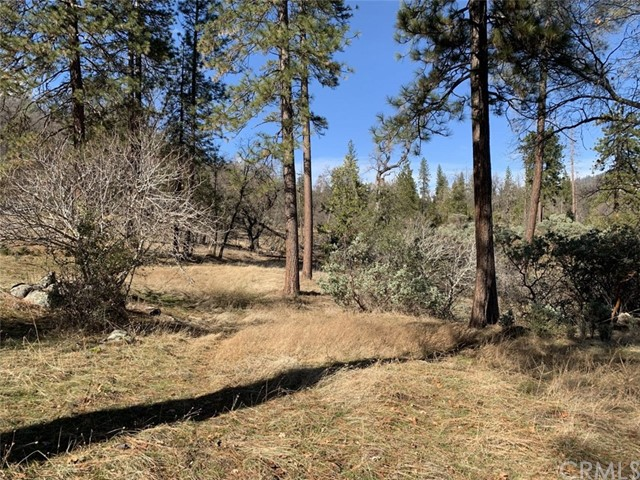 64.04 AC Road 223, North Fork, CA, 93643