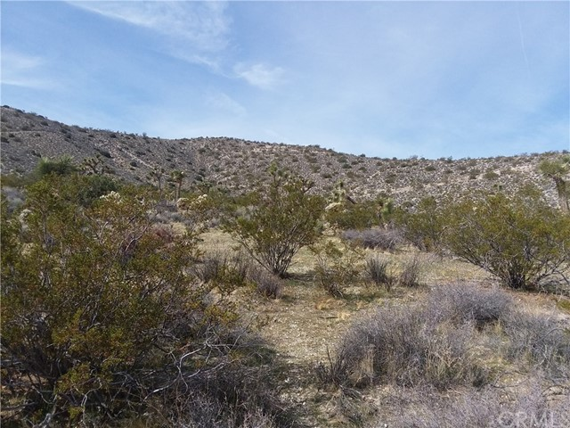 1 Finch Run, Yucca Valley CA: http://media.crmls.org/medias/29c3e154-fe68-43c1-ad32-c911e53e148f.jpg