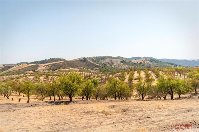 Additional photo for property listing at 4515 Stags Leap Way  Paso Robles, California 93446 United States