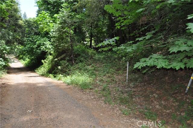 0 Treelined Lane, Berry Creek CA: http://media.crmls.org/medias/2a52c25e-4f3c-4e2e-b92e-9cbdec9734c7.jpg