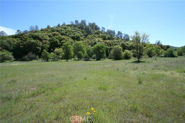 5701 Vista Mt Estates Drive Kelseyville, CA 95451 - MLS #: LC16079943