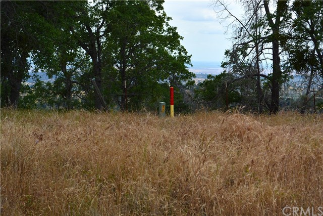 4 Buck Lane, Coarsegold CA: http://media.crmls.org/medias/2afe5e03-5d38-4471-8e25-28bf079712da.jpg