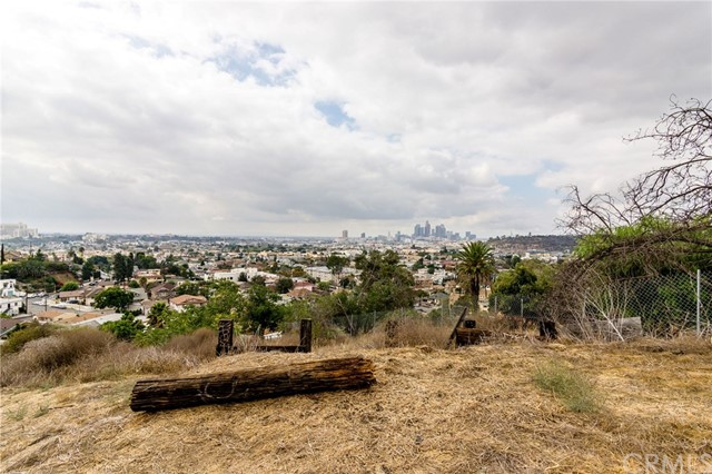 2939 Johnston St, Los Angeles, CA 90031 Photo 9