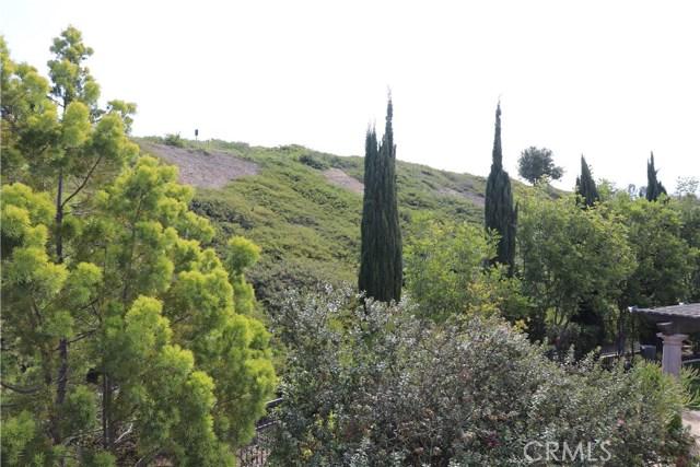 53 Trumpet Vine, Irvine, CA 92603 Photo 11