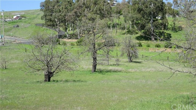 335 Lakeview Road Lakeport, CA 95453 - MLS #: LC18209385