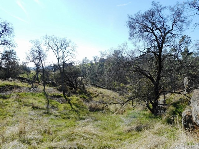 Lot 1442 John Muir Court, Coarsegold, CA, 93614