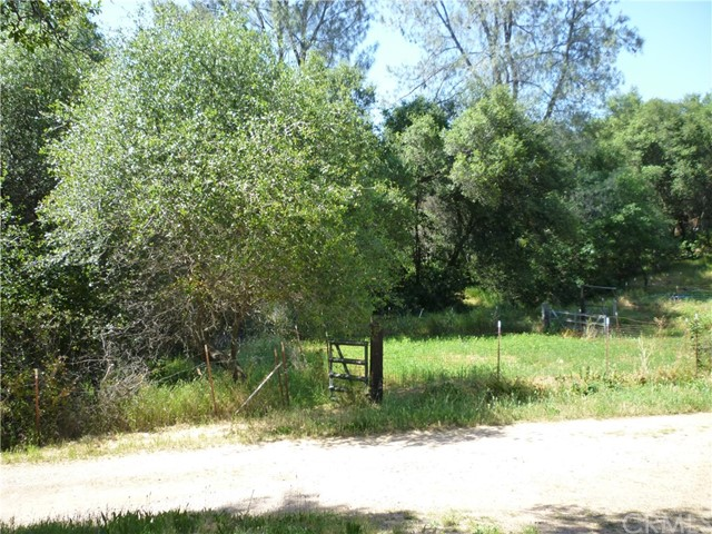 15 Lower Gulch Road Oroville, CA 95965 - MLS #: PA18119045