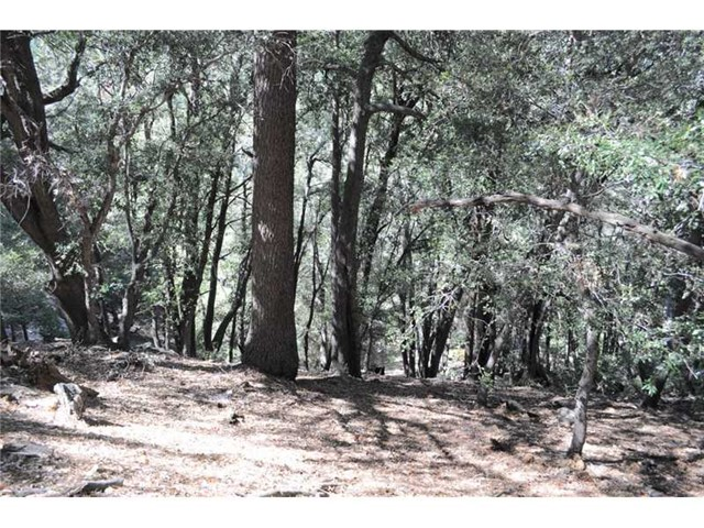Additional photo for property listing at 0 Cedar Pines Drive Cedarpines Park, California United States