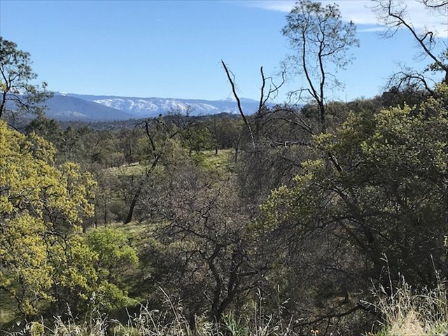 0 Lot 1507 Lilley Mountain Drive, Coarsegold CA: http://media.crmls.org/medias/2dba71ba-2e9c-44a4-aa8d-87196a5bfc8f.jpg
