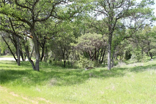 Additional photo for property listing at 0 Quail Hill Road  Mariposa, California 95338 United States