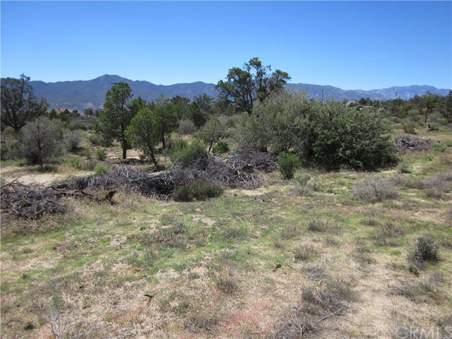Additional photo for property listing at 466 Chillon Hieghts Mountain Center, California United States