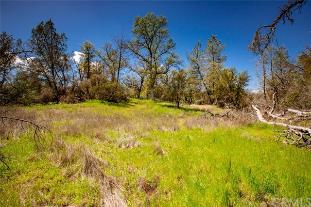 4245 Burl Drive Mariposa, CA 95338 - MLS #: MP14234057