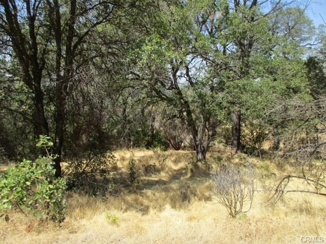 0 Apica Avenue, Oroville CA: http://media.crmls.org/medias/2fbf9448-2ab1-478c-8999-f6208ccb113f.jpg